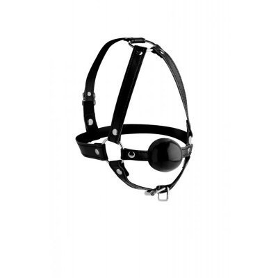 Head Harness With Ball Gag